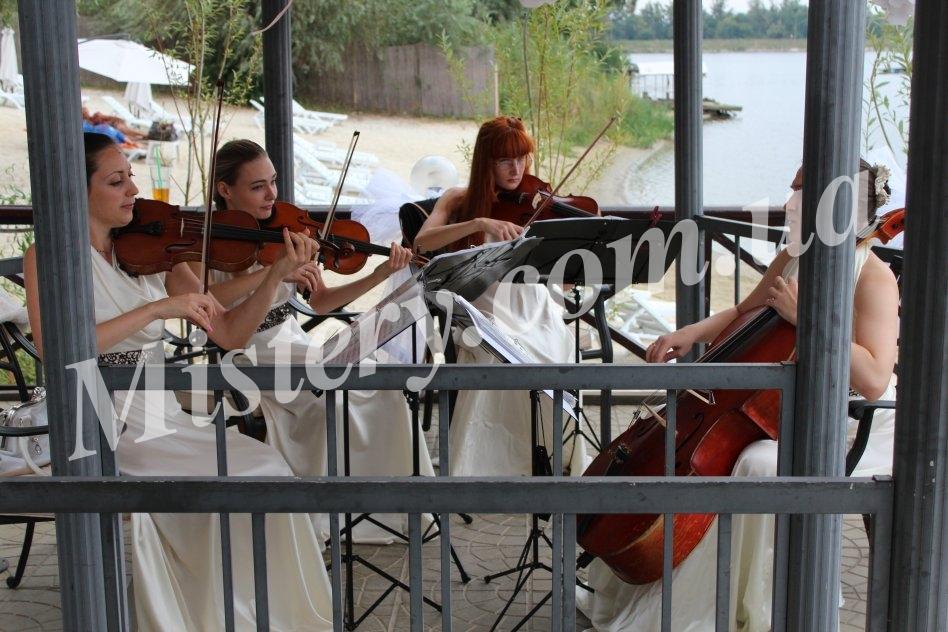 Живая музыка Харьков